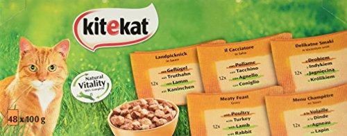 Kitekat Katzenfutter Nassfutter Landpicknick in Sauce, 48 Portionsbeutel (48 x 100g) (Datum-sauce)