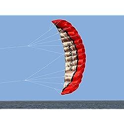 Kwasyo 2.5m Deux Ligne Parapente Cerf-Volant avec Manette 30m ,Cerf-Volant pour Le Sport en Plage,Jeux de Plein air dans Le Jardin