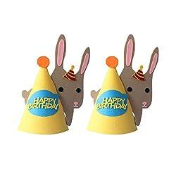 Amosfun 2Pac Geburtstagsfeier Hüte Kegel Hüte Tierform Geburtstag Hut Foto Requisiten für Kinder Kinder Kleinkinder Urlaub Geburtstag Babyparty Partei Liefert Gefälligkeiten