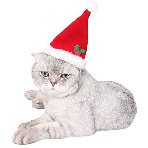 Weihnachtsmütze, Legendog Klein Rot Hund Katzen Nikolausmütze Verstellbarer Netter Haustier Party Kostüm (Die Katze Im Hut)