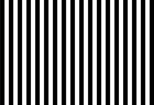 fivan-en 150* 220cm schwarz und weiß gestreift Hintergrund Kind Fotografie Hintergrund Fotografie Requisiten Geburtstag Portraitfotografie ft-3595
