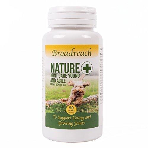Advanced Joint Ergänzung für Jünger Gelenken um zu helfen Unterstützung der Entwicklung von Gesunde in Dogs 6 to 24 Monate alt - nur natürliche Inhaltsstoffe - Veterinär entwickelt Formulierung - 90 (Hund Ergänzung Joint)
