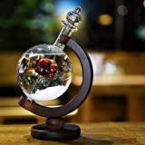 JHion Storm Glass Weather Predicting Forecast Bottle Crystal Red Rose Flower Globe Barometer with Wooden Base Crafts Home Office Desktop Decors Birthday