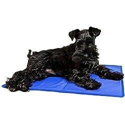 Alfombrilla refrescante para perros (40 x 50cm)