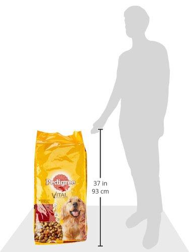 Pedigree Adult Hundefutter Rind und Gemüse, 1 Beutel (1 x 15 kg) - 5