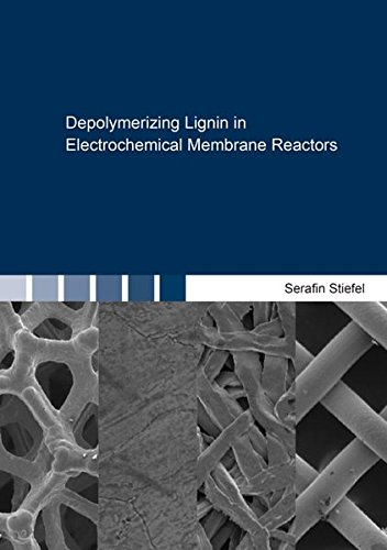 Depolymerizing Lignin in Electrochemical Membrane Reactors (Berichte aus der Verfahrenstechnik)