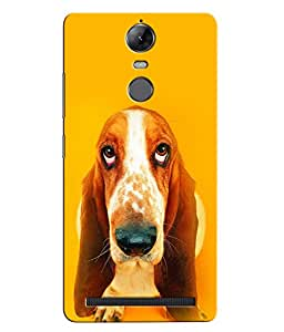 Citydreamz Dog Abstract Design Hard Polycarbonate Designer Back Case Cover For Lenovo K5 Note