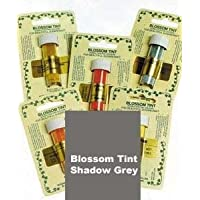Sugarflair Shadow Grey Edible Blossom Tints Food Colour Colouring Dust