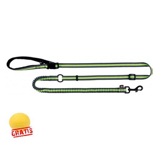 TRIXIE Joggingleine Gurtband für Hunde Ruckdämpfer mit stufenlos verstellbarer + BALL Gratis (0,90-1,30 m/20 mm)