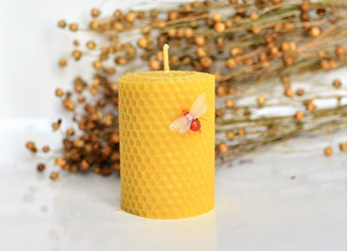 100-beeswax-pillar-candle-size-6-x-8-cm-hand-rolled-unscented-natural-honey-scent-100-handmade-with-