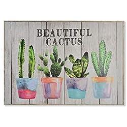 Cuadro de cactus tapa contador de la luza