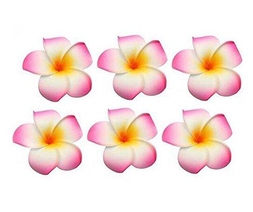 Hawaiian Plumeria Blume Haar Clips Hochzeit Brautschmuck Dekoration Haarspange Haarspange Haar-Accessoires für Party Strand Urlaub ()