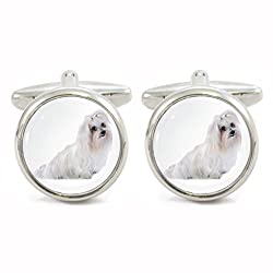Maltese Dog Image Rhodium Plated Small Bordered Cufflinks in Gift Box