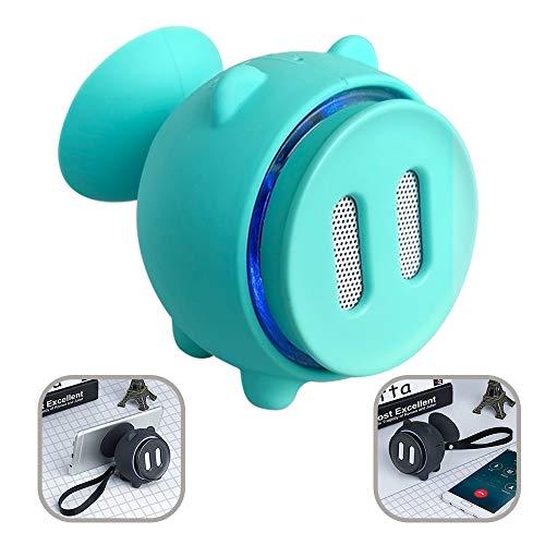 FLABEY Tragbarer Lautsprecher, Mini Wireless Portable Bluetooth-Lautsprechersystem, mit eingebautem Mikrofon und SD/TF-Kartensteckplatz IP56, staubdicht und wasserdicht