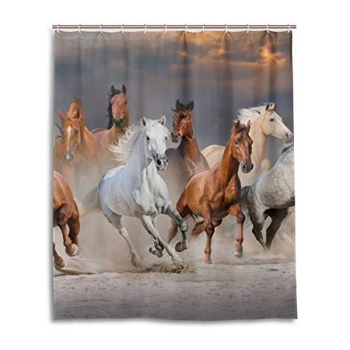 Duschvorhang Pferd - einfach finden auf duschvorhaenge24.de!