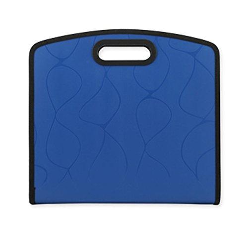 Liying Neu Retro Chic Fächermappe Dokumentenmappe Schulmappe Ordnungsmappe Fächertaschen DIN A4 PP 13 Fächer sortiert mit Griffe Schwarz Blau (Plissee Schwarz Handtasche)