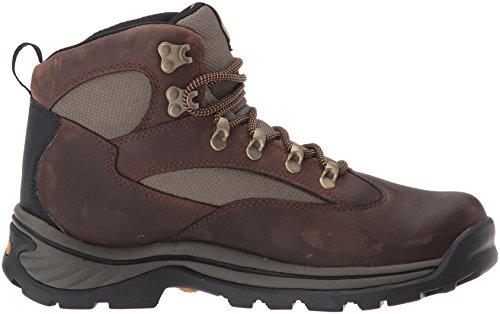Timberland 15130 Chocorua Trail, Scarpe da Trekking, Uomo Marrone (Braun (Brown W/ Green))