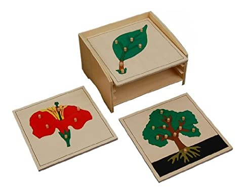 Montessori Botany Puzzle Cabinet with 3 Puzzles by Kid Advance Co.