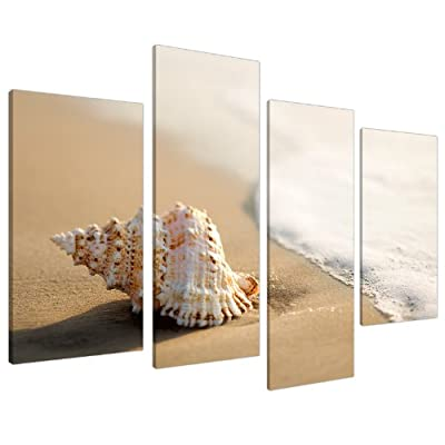Large Beige Bathroom Canvas Wall Art Pictures Shells XL Sea Print 4146 - inexpensive UK canvas store.