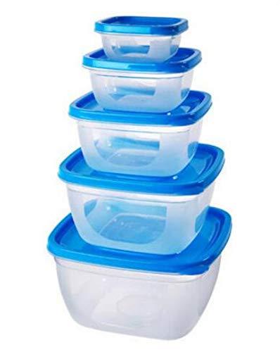 nanyin Behälter Lebensmittelbehälter Mit Deckel 5 Teile/Satz Küche Aufbewahrungsboxen Microwavable Plastikbehälter Der Kühlschrank Bowl Organizer, Square Blue -