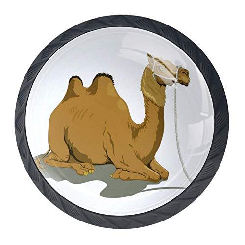 Schublade Knöpfe Hardware Runde Schublade Griffe Kristallglas Edelstahl Schraube für Küchenschrank Kommode Schrank Kleiderschrank Tür ziehen 1,38 * 1,11 in. Kamel - Kamel Griff