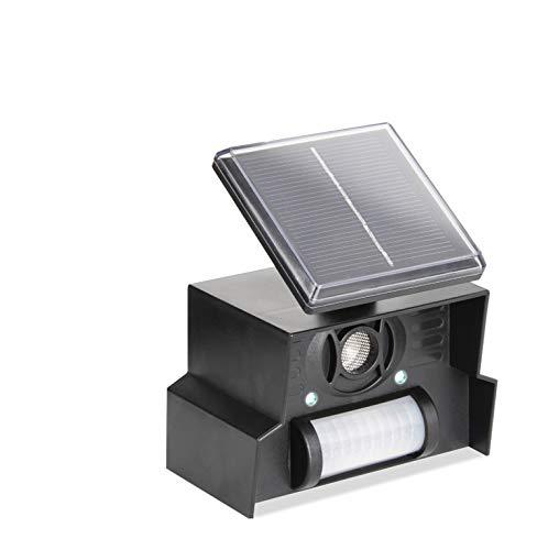 PestBye Solar Ultraschall Katzenvertreiber Katzenschreck