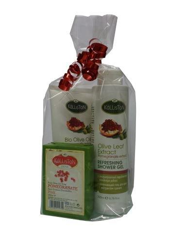 Naturkosmetik Geschenk Set Duschgel Creme & Seife Granatapfel - natürliches Dusch Gel, Hand- Körperlotion + Seife im Klarsichtbeutel Natur Kosmetik (Seife Hand Geschenk-set)
