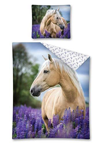 DP Bettwäsche mit Pferdemotiv, Pferde Bettwäsche 100 % Baumwolle, 140 x 200 cm, 70 x 90 cm