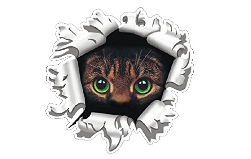 Preisvergleich Produktbild 2x Katze Cat im Einschussloch Autocollants Aufkleber Sticker Pegatinas digital Druck Racing Tuning Auto Car Bike Motorrad JDM Dub Laptop Notebook