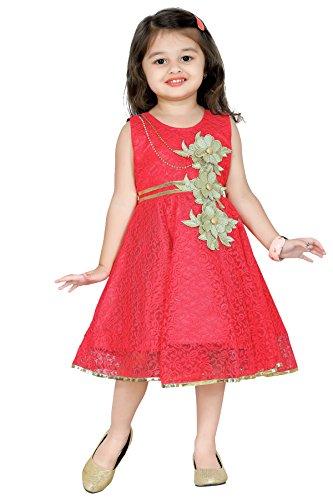 Aarika Baby Girl's Party Wear Net Frock (FK-755-GAJRI_20_18-24 Months)