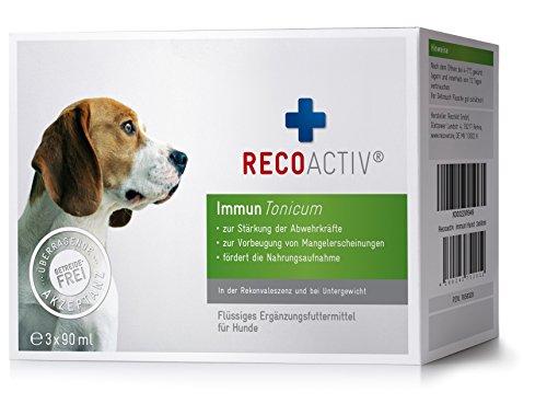 RECOACTIV® Immun Tonicum für Hunde - Kurpackung 3x90 ml