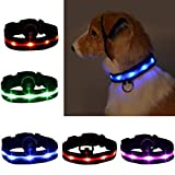 Legendog Leuchthalsband Hund LED Halsband Hund Verstellbar Nacht Walker Sicherheit Kragen Lichtband Hund Licht für Hunde Welpen Katzen Orange L