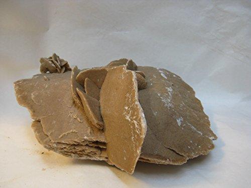 Natural mente – Sable rose, 14 x 20 cm, 1,35 kg, minéral, cristal, désert Rose, n ° 1234
