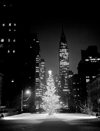 USA New York City Christmas tree in street at night Poster Drucken (45,72 x 60,96 cm)