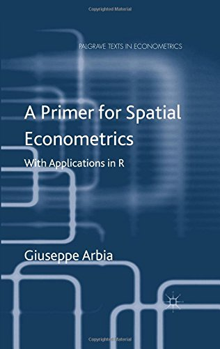 A Primer for Spatial Econometrics (Palgrave Texts in Econometrics)
