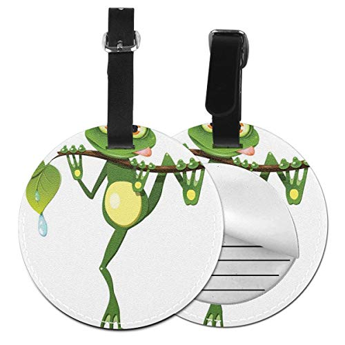 Round Travel Luggage Tags,Little Frog On Branch of The Tree In Rainforest Nature Jungle Life Art Earth,Leather Baggage Tag