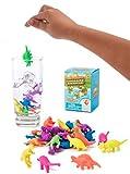 Aufregendes Wasserspielzeug - Dinosaurier wachsen im Wasser - Spielspaß für die Badewanne, Schwimmbad - Badespielzeug Dinosaurier buntes Spielzeug zum Spielen & Lernen - BPA-frei
