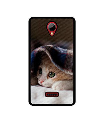 Casotec Sleepy Kitten Design Canvas Printed Soft TPU Back Case Cover for Micromax Canvas Fun A76  available at amazon for Rs.349