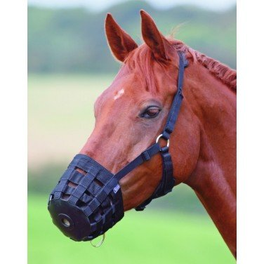 Hy Muzzle - pony - black (Hy Maulkorb, Pony, Schwarz)