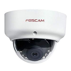Foscam D2EP Full HD Full HD 2MP PoE P2P WDR 2.0 wettergeschützte IP-Kamera/Überwachungskamera mit IR Nachtsicht bis 20 m, Bewegungserkennung