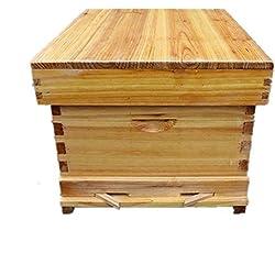 QYLT Ruche pour Abeilles, Maison en Ruche en Bois d'abeille Abeilles en Bois Et Matériel D'apiculture Ruche Fourniture D'apiculteur (17 pcs Accessoires)