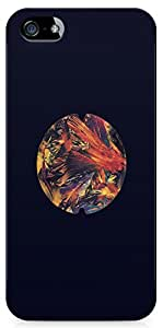 Apple iPhone 5 Back Cover by Adsertor