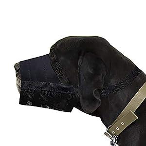 Dingo 16777 Muselière en Nylon pour Rottweiler, Chien Allemand, Berger Allemand, Grandes Races