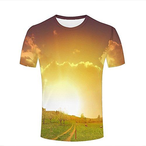 Men Women Unisex 3D Tshirts Grassland Cattle Sunshine Creative Summer Casual Tees