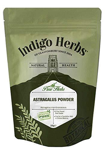Indigo Herbs Astragalus Pulver Parent (250g) - Chinesischen Astragalus-wurzel-extrakt
