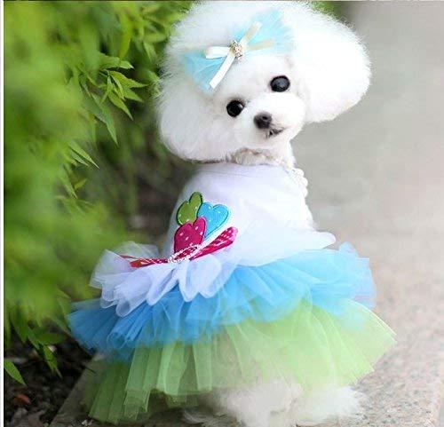 Hund Latzhose Pant lipanpan Hund Rock Haustier Kleidung Bumerang Rock Teddy Welpe als Bär Kostüm Sommer dünne Hund Kleidung Katze Rock Druckknopf - Bär Kostüm Für Hunde