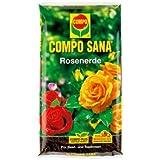 "'Rose Tierra Compo Sana–® """