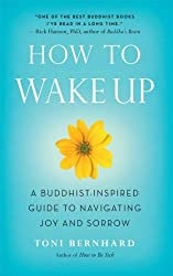 How to Wake Up: A Buddhist-Inspired Guide to Navigating Joy and Sorrow (English Edition)