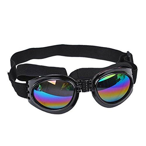 Homyl Hund Sonnenbrille Spielzeug Augenschutz Wind Sonnenbrille mit Verstellbarer Gurt Schwarz