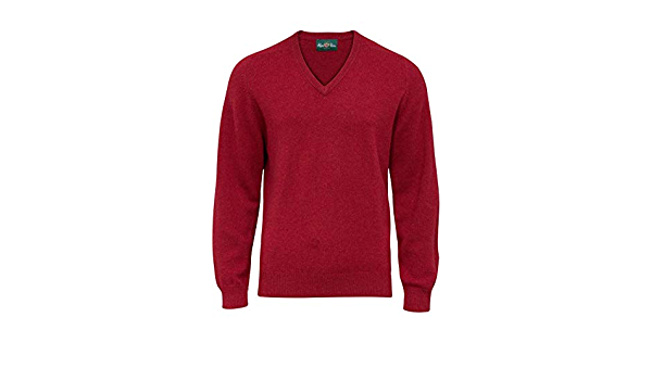 Alan Paine Hombre Burford Lambswool V-Neck Jumper Magma